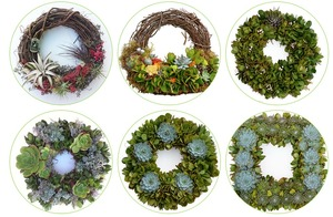 Urban FarmGirls Living Wreath